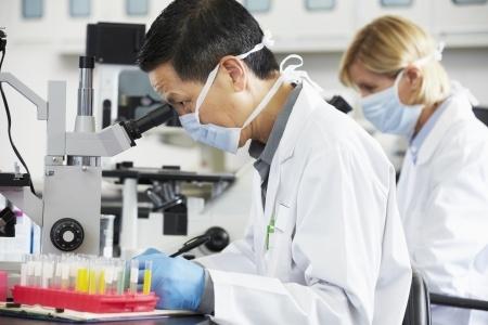 ερευνητές του τμήματος έρευνας και ανάπτυξης της gano excel