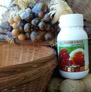 ταμπλέτες με garcinia (γκαρσίνια) και ganoderma lucidum (γανόδερμα) της gano excel