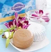 σαπούνι με εκχύλισμα ganoderma lucidum (γανόδερμα) και γάλα κατσίκας