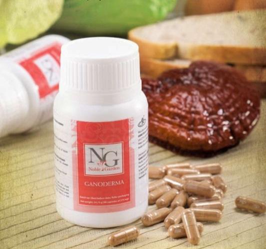 Συμπληρώματα διατροφής: ταμπλέτες με ganoderma lucidum (γανόδερμα) της Gano Excel