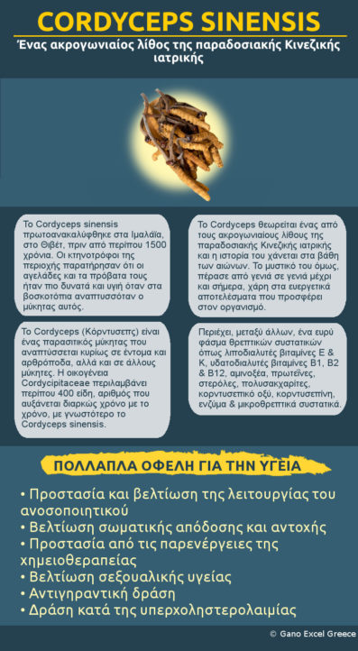 Infographic με θέμα Cordyceps sinensis: Ένας ακρογωνιαίος λίθος της παραδοσιακής Κινεζικής ιατρική