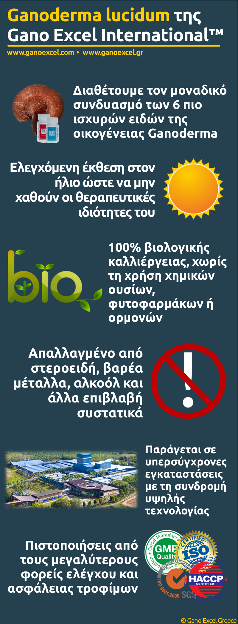 Infographic με θέμα το Ganoderma lucidum της Gano Excel International