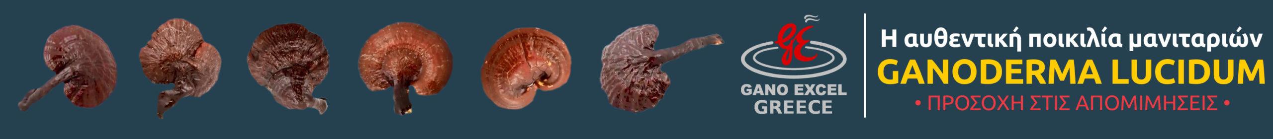 Η αυθεντική ποικιλία μανιταριών Ganoderma lucidum