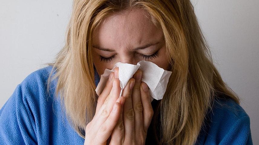 Αλλεργίες: Η αντιαλλεργική δράση του Γανοδέρματος