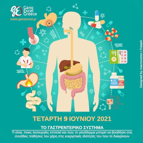 γαστρεντερικό σύστημα - αφίσα διαδικτυακού σεμιναρίου στο zoom